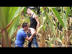 Cornfield Blowjob For Exhibitionist Lad